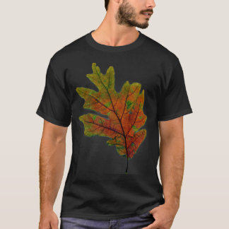 fall leaf 2 T-Shirt