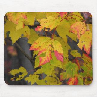 Fall Leaf III Mouse Pad