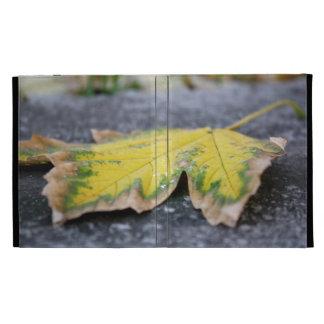 Fall Leaf iPad Case