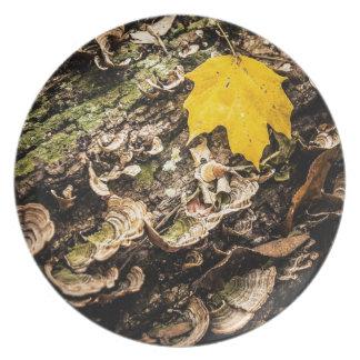 Fall Leaf on Log Melamine Plate