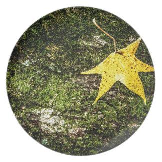 Fall Leaf on Moss Melamine Plate