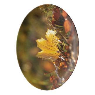Fall Leaf Platter