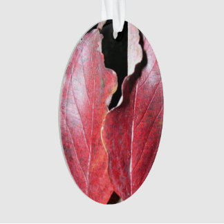 Fall Leaves - Acrylic Oval Ornament