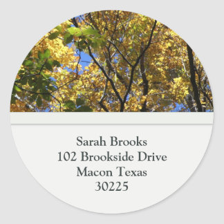 Fall Leaves Address Labels Classic Round Sticker