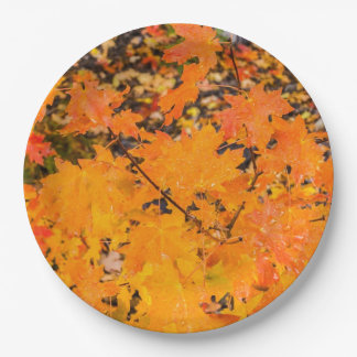 Fall Leaves After the Rain Paper Plate