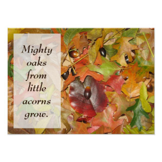 Fall Leaves and Acorns Poster