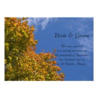 Fall Leaves and Blue Sky Marriage Announcement