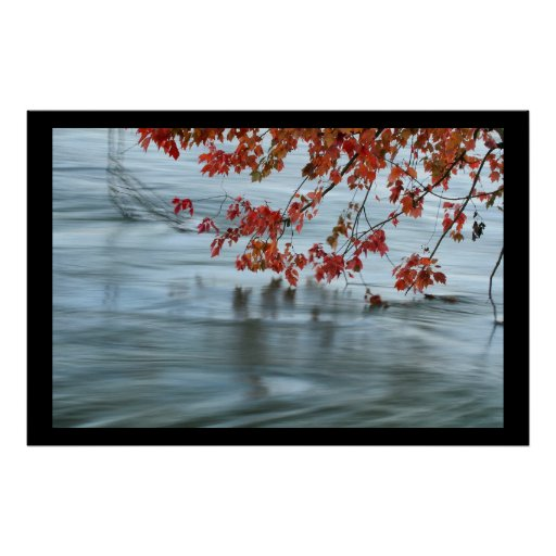 Fall Leaves and Fall Floods Print