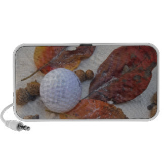 fall leaves and golf ball in sand trap iPod speaker