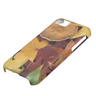 Fall leaves and toadstool cover for iPhone 5C