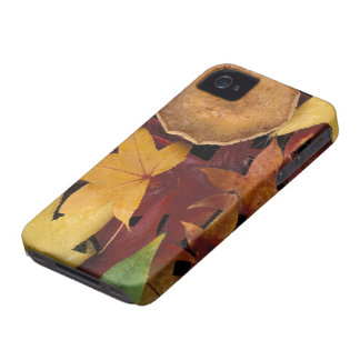 Fall leaves and toadstool iPhone 4 case