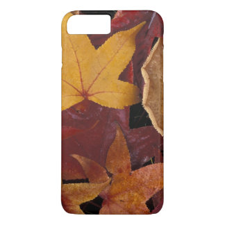 Fall leaves and toadstool iPhone 7 plus case