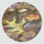 Fall Leaves At The Edge Of The Pond Classic Round Sticker