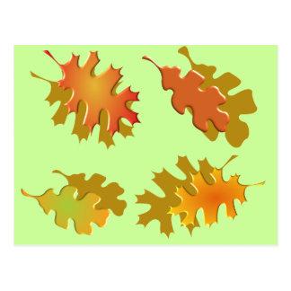 Fall Leaves Autumn Design Postcard