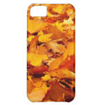 Fall Leaves Autumn Ground Cover iPhone 5C Cases