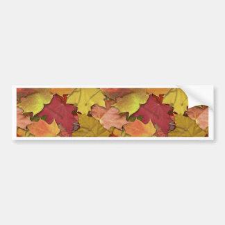 Fall Leaves Car Bumper Sticker