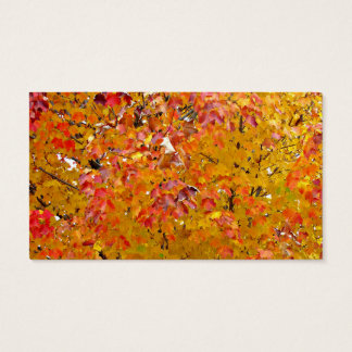 Fall Leaves Business Cards, Autumn Leaves, Nature Business Card