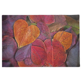 Fall Leaves Doormat