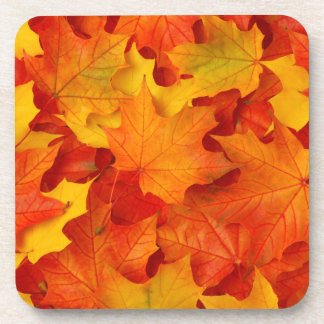 Fall Leaves Drink Coaster