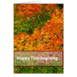 Fall Leaves Happy Thanksgiving Greeting Card