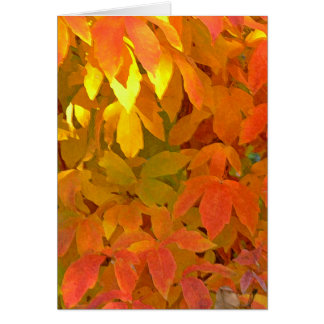 """FALL LEAVES IN LEMON, ORANGE AND LIME"" (PHOTOG) CARD"