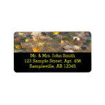 Fall Leaves in Pond Water Nature Photography Label