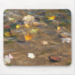 Fall Leaves in Pond Water Nature Photography Mouse Pad