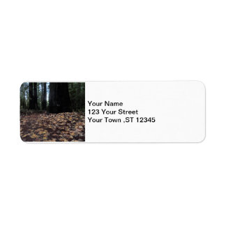 Fall Leaves in the Forest- Humboldt Redwoods Return Address Label