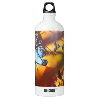 Fall Leaves in The Light and Shadows SIGG Traveler 1.0L Water Bottle