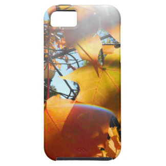 Fall Leaves in The Light iPhone 5 Covers