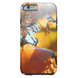 Fall Leaves in The Light iPhone 6 Case