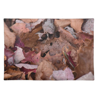 Fall leaves in the Smoky Mountains Cloth Placemat