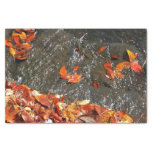 """Fall Leaves in Waterfall I 10"""" X 15"""" Tissue Paper"""