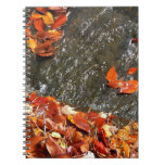 Fall Leaves in Waterfall I Autumn Photography Spiral Note Book