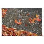 Fall Leaves in Waterfall I Autumn Photography Cloth Placemat