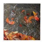 Fall Leaves in Waterfall I Autumn Photography Small Square Tile