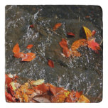 Fall Leaves in Waterfall I Autumn Photography Trivet