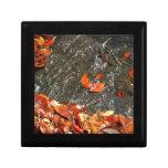 Fall Leaves in Waterfall I Keepsake Box