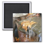 Fall Leaves in Waterfall II Autumn Photography Magnet