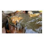 Fall Leaves in Waterfall II Autumn Photography Poster
