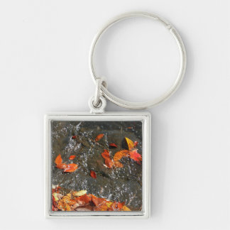 Fall Leaves in Waterfall Keychain