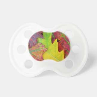 Fall Leaves in yellow, red, orange and Purple BooginHead Pacifier