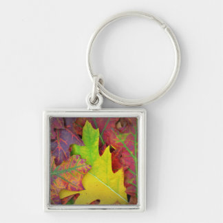 Fall Leaves in yellow, red, orange and Purple Keychain