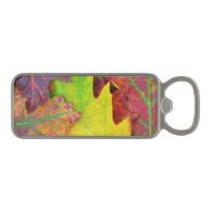 Fall Leaves in yellow, red, orange and Purple Magnetic Bottle Opener