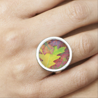 Fall Leaves in yellow, red, orange and Purple Rings