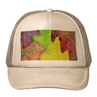 Fall Leaves in yellow, red, orange and Purple Trucker Hat