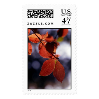 Fall leaves in Yosemite National Park Stamp