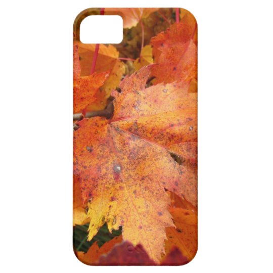 Fall Leaves iPhone 5 case