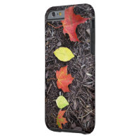 Fall Leaves iPhone 6 Case