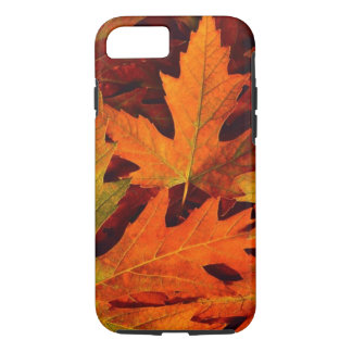 Fall leaves iPhone 7 case
